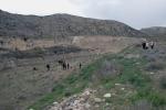2008-04-14-barranco-de-la-bartolina-rosas-rojas-fotos-de-miguel-angel-capape