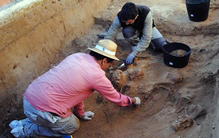 exhumacion-Puerto-Real-permitiran-franquismo_EDIIMA20151203_0541_18