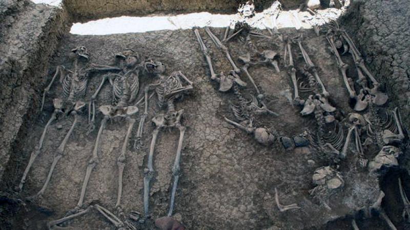 fosa-cementerio-san-rafael-malaga_ediima20140110_0407_13